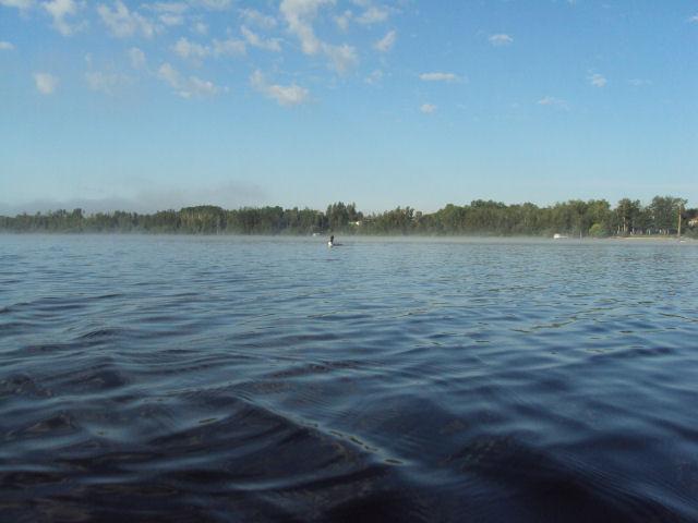 lake loon pics 001-s1